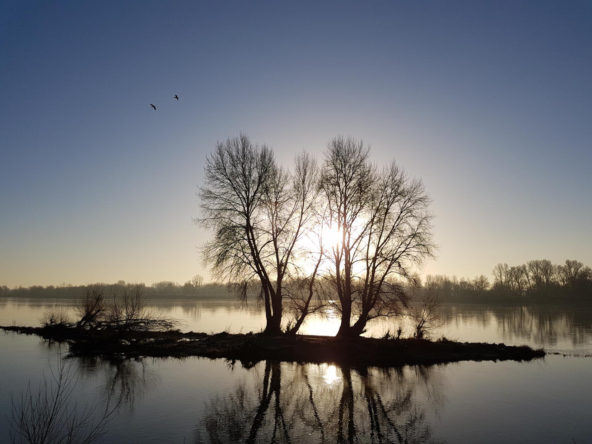 La Loire à l'aube